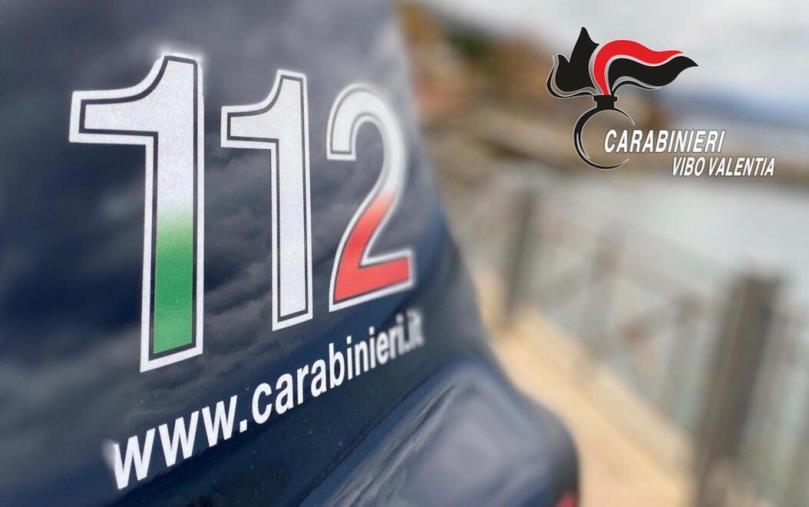 images Multati due negozi a Ionadi, i carabinieri riscontrano violazioni amministrative e mancato rispetto dei requisiti in materia di igiene