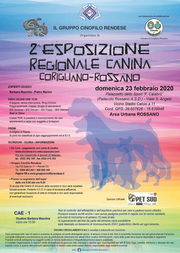 images Cinofilia, domenica 23 febbraio a Corigliano-Rossano attesi i migliori cani di razza e con pedigree da tutto il Sud Italia