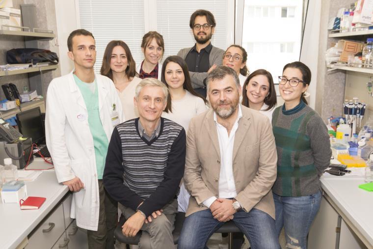 images Scoperta l'origine dei tumori del cuore dal laboratorio di Cardiologia Molecolare e Cellulare dell'Università Magna Graecia di Catanzaro