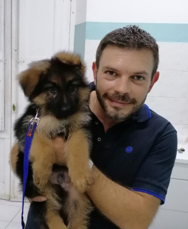 images Zoonosi: malattie trasmissibili da animale a uomo, a tu per tu con Gaetano Marrazzo, veterinario
