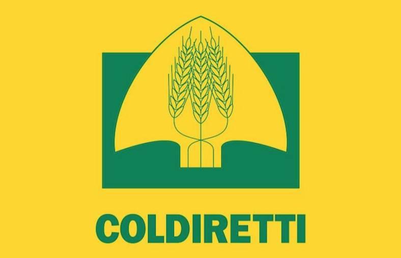 """images Il Consorzio Tirreno Vibonese ha aumentato la tariffa irrigua. Coldiretti: """"Agricoltori della Cipolla Rossa di Tropea IGP sono pronti a proteste eclatanti"""""""