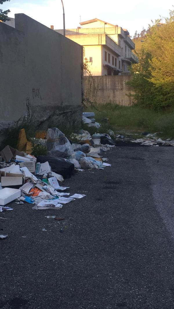 """Catanzaro. Via Conti Ruffo sommersa dai rifiuti. La denuncia di Cristina Rotundo: """"Una situazione insostenibile"""""""