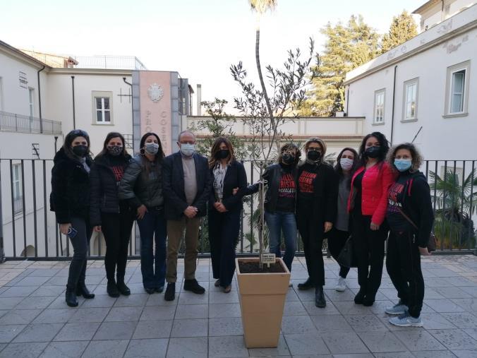 Cosenza. One Billion Rising pianta un albero di ulivo nel Palazzo del Governo contro le violenze di genere