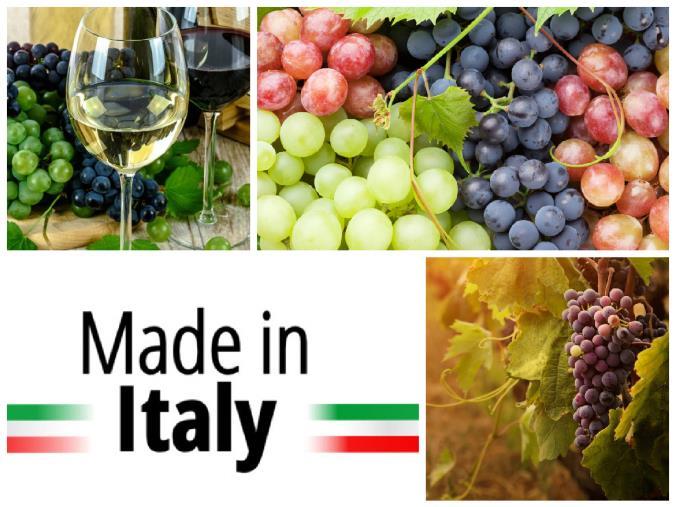 """Vino dealcolato per volere dell'Europa. Taverniti: """"Cosa c'è di vero? Difendiamo il distintivo di eccellenza 'Made in Italy'"""""""